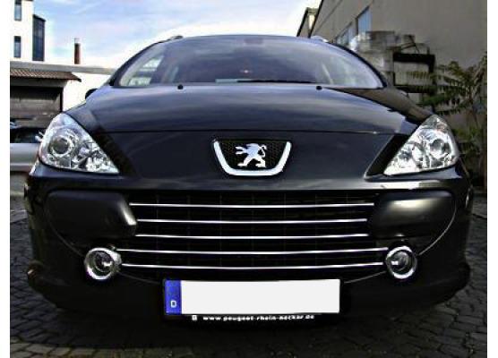 Radiator grill chrome moulding trim Peugeot 307 0519 Peugeot 307 CC 0519 Peugeot 307 SW 0519