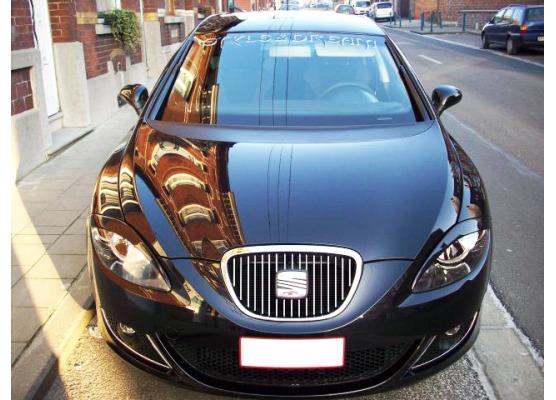 Radiator grill chrome moulding trim Seat Altea Seat Cordoba Seat Ibiza 8496 Ibiza 9601LeonToledo