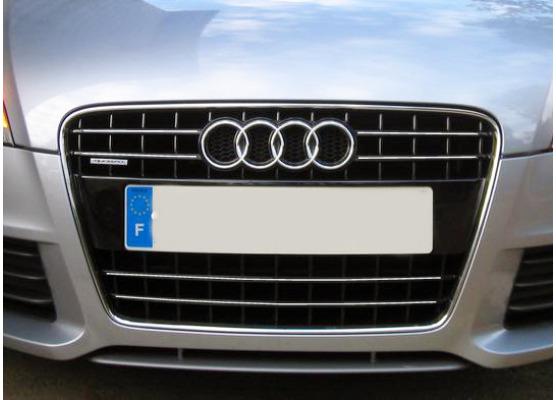 Radiator grill chrome moulding trim Audi TT Série 2 0614 Audi TT RS Audi TTS