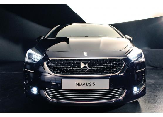 Lower radiator grill chrome trim DS 5