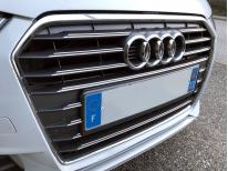Radiator grill dual chrome trim