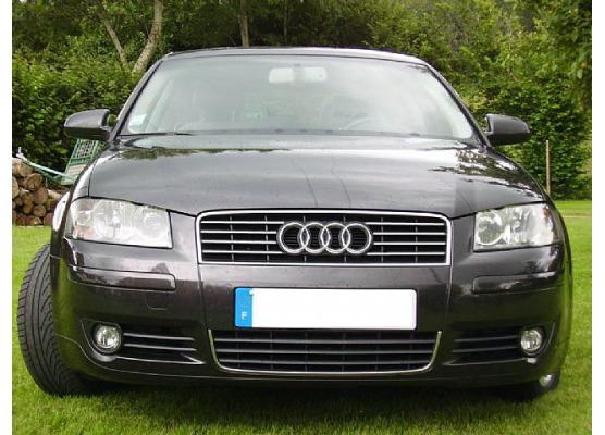 Upper radiator grill chrome trim Audi A4 série 1 9498série 2 0004 RS4 0001 S4